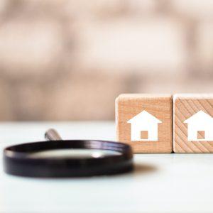 zoom legno: analisi delle soluzioni